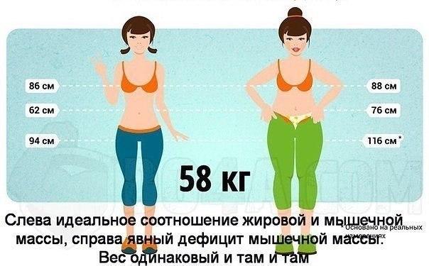 Насколько Надо Мне Похудеть.