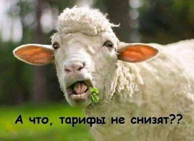 Повышать тарифы на отопление и горячую воду в Киеве сейчас не будут, - КГГА - Цензор.НЕТ 3175